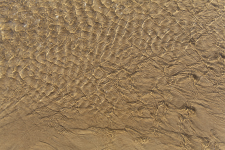 Beautiful sunlit fine waves of shallow clear water on the smooth sand Baltic Sea beach