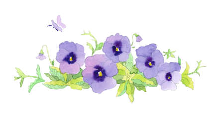Beautiful elegant watercolor purple garden pansy border vignette