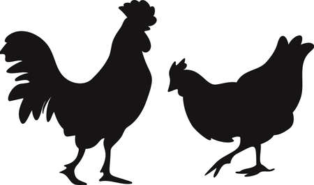 Vector illustration black silhouettes of hen and rooster isolated on a white background. Farm bird design.