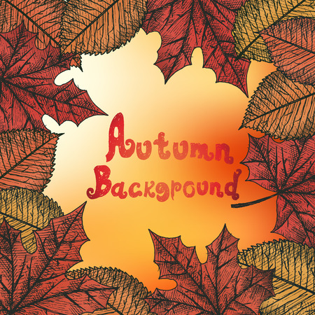 Autumn background isolated objects. Hand drawn vector illustration.
