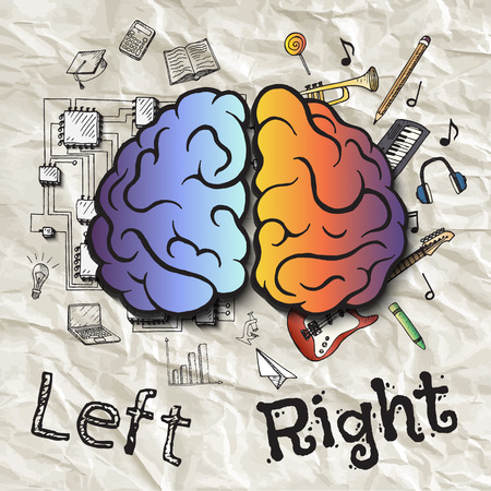 left right: The left and right hemispheres of the brain. Hand drawn vector illustration.