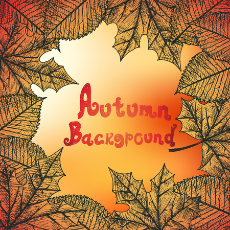 grebe: Autumn background isolated objects. Hand drawn vector illustration.