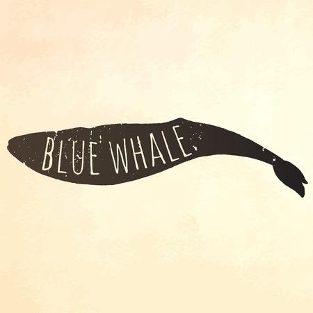 sail fin: Engraving technique whale.  illustration.