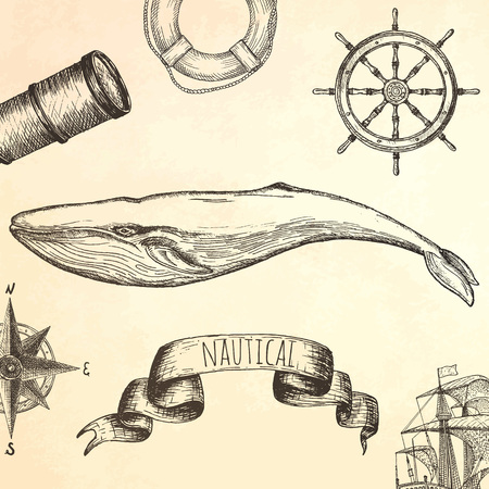 sail fin: Engraving technique whale. Vector hand drawn illustration.