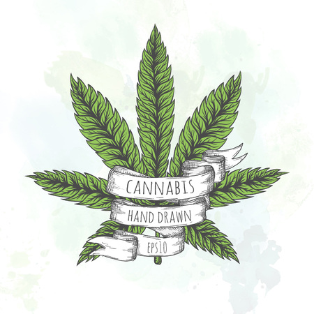 indica: Marijuana stuff collection. Hand drawn isolated illustrations on watercolor background.