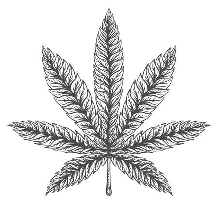 hoja marihuana: colección de cosas marihuana. Dibujado a mano ilustraciones aisladas en el fondo de la acuarela.