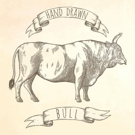 牛は手描き下ろしイラストです。