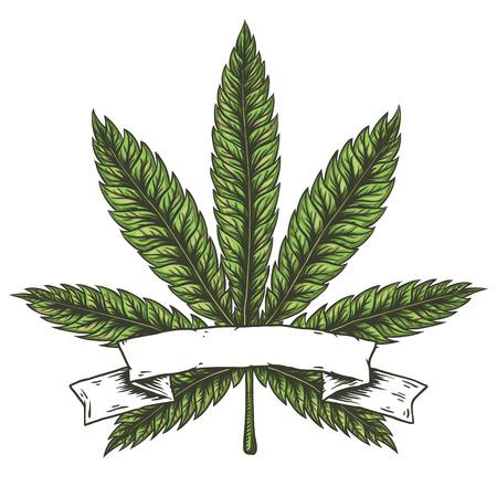 大麻葉のベクター イラストです。