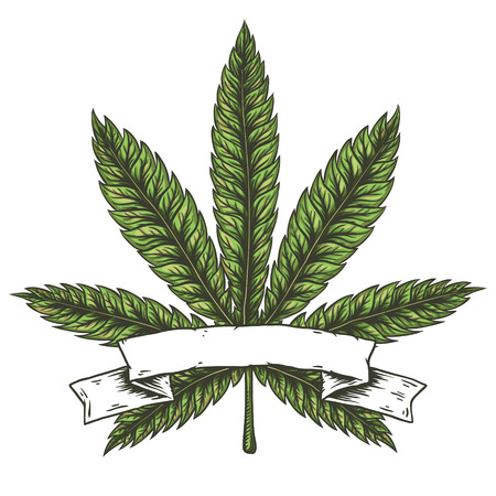 Cannabis leaf vector illustration. Illustration