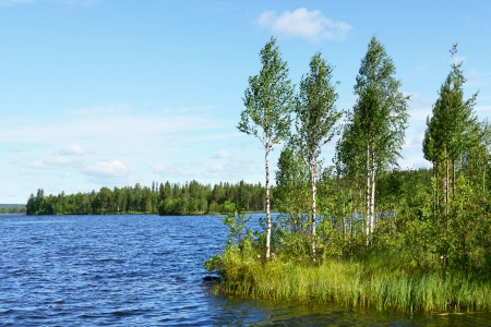 Summer day  Northern Finland photo