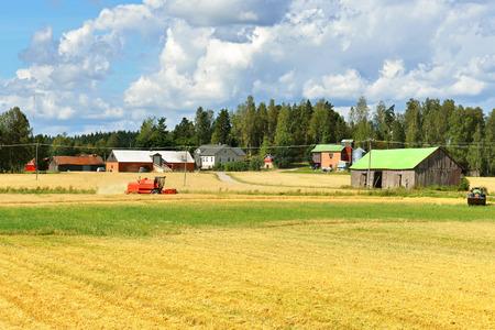 harvests: Combine harvests crop of rye