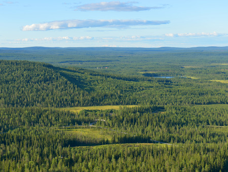endless: Northern hills and endless forests