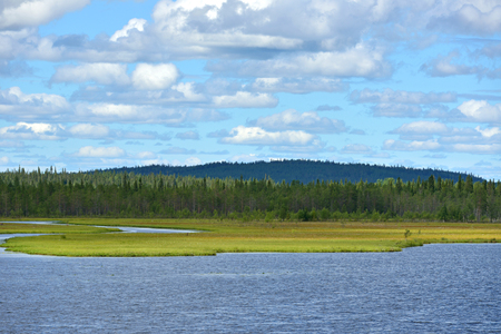 bogs: Northern landscape. River and marshy banks. Finnish Lapland Stock Photo