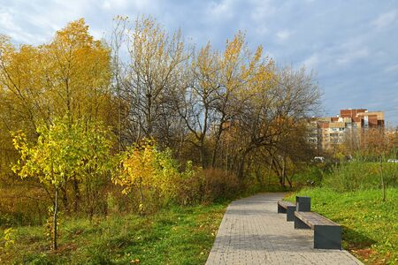 Mitino Landscape Park. Moscow, Russia. Trees and shrubs in Golden autumn Imagens