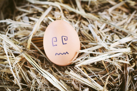 jowl: Painted  eggs about emotion on the face