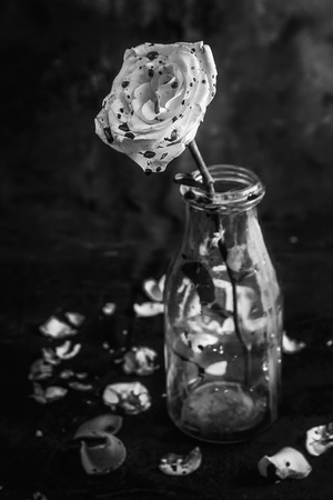 roses and blood: Bloody rose in bottle on black background Stock Photo