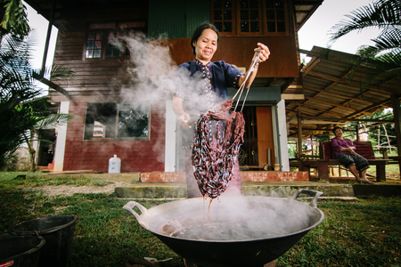 illustrative material: Chiang Rai, Thailand - September 17, 2015 : Unidentified woman is dyeing cotton with natural materials in Chiang Rai, Thailand