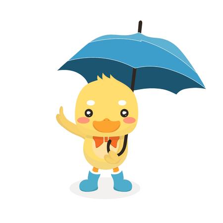 rubber ducks: Cartoon baby duck on white background. Illustration
