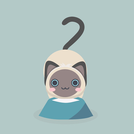 siamese: Siamese cute kitten.
