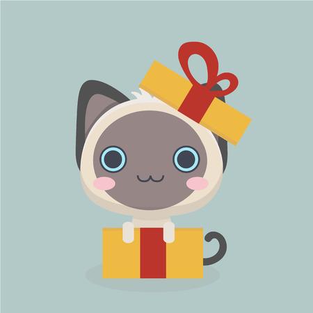 siamese: Cute siamese kitten.