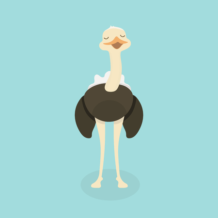 Cute Ostrich in flat style isolated.