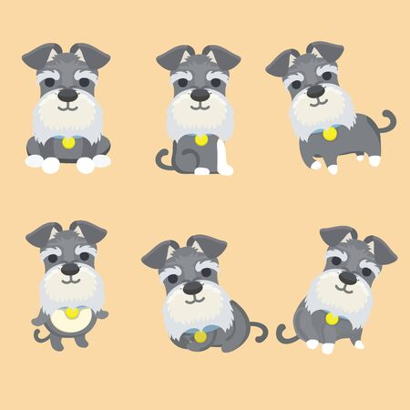 Set of Schnauzer dog cartoon vector illustration.