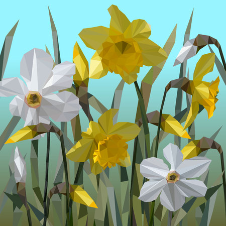 Vector of daffodil flowers isolated. Vettoriali