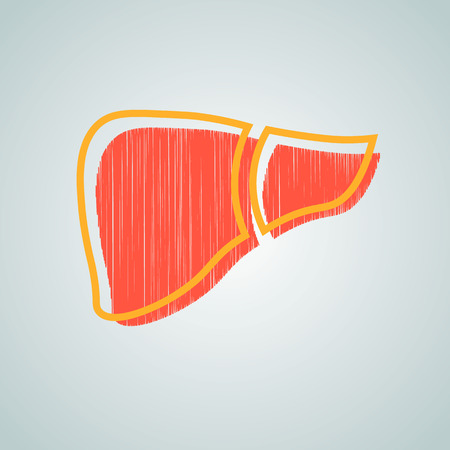 A healthy liver and a liver with cirrhosis. vector illustration.