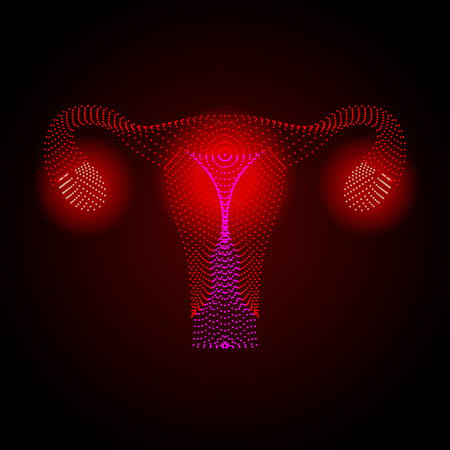 Uterus with ovary, cervix, fallopian tubes isolated on background. Female reproductive system. Healthy womb. Gynecology, anatomy concept. Human internal organs. Vector illustration.