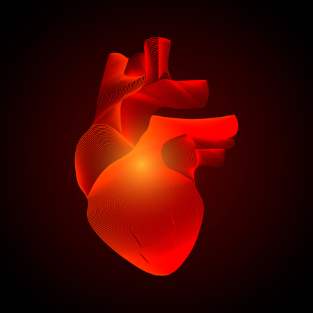 Vector isolated heart with pain center. 3D white human organ on dark background. Medicine concept with line. Abstract heart pain mash line origami. 10 eps