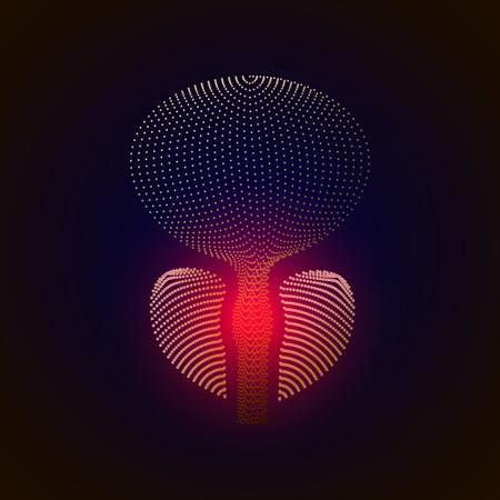 Vector geïsoleerde prostaat met pijncentrum. 3D wit menselijk orgel. Geneeskunde concept met lijn. vector illustratie van prostatitis. seksuele infecties, prostaat. 10 eps