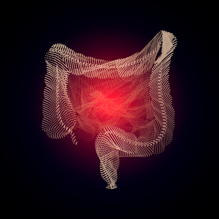 Vector isolated intestines with pain center. 3D human organ Medicine concept with line. Illustration