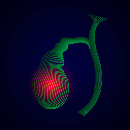 Illustration of Human gallbladder with pain center. 3D human organ