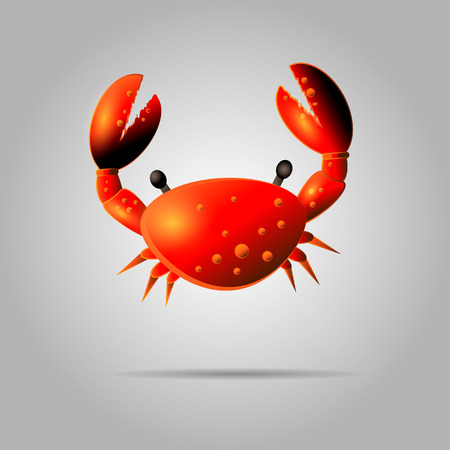 Colorful red crab vector illustration. Shell crab icon isolated on gray background. Water animal with claws Vectores