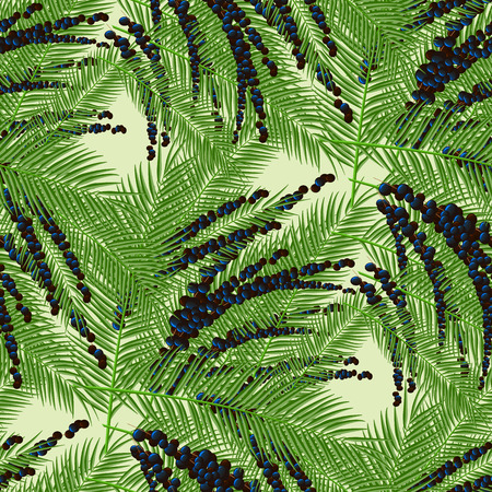 Euterpe palm. Seamless pattern with acai berries and acai palm. 10 eps Illustration