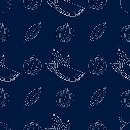 Quararibea cordata. exotic Eco food. South American sapote or chupa-chupa seamless pattern 10 eps