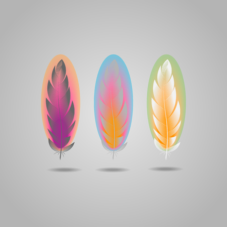 Vector bright element set of colorful feathers 10 eps Ilustrace