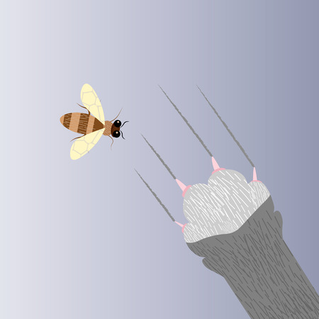 Cat and bee. Cat s paw catches a bee 10 eps Illustration