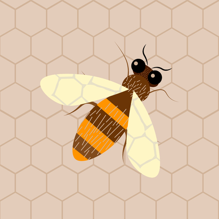bee and honeycomb . Modern abstract honey design element 10 eps