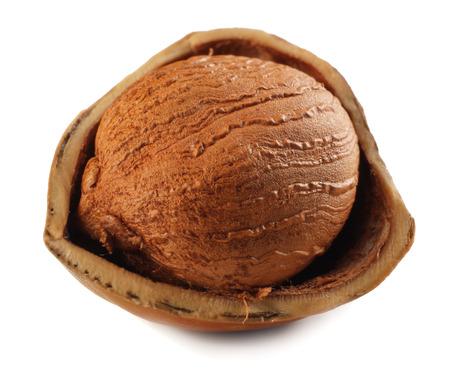 one hazelnut isolated on a white background. macro