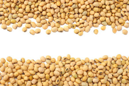Soybeans isolated on white background. top view