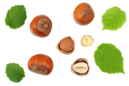 hazelnuts with leaves isolated on white background. top view Stok Fotoğraf