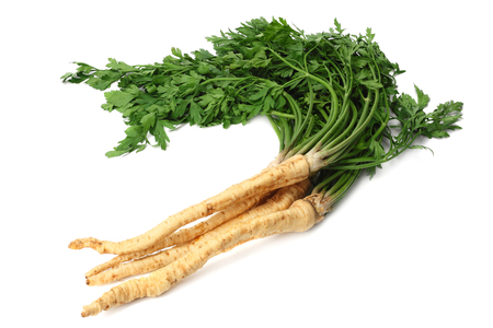 fresh parsley root isolated on white background