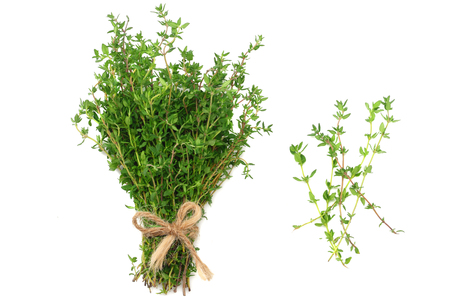 Thyme bunch isolated on white background. top view