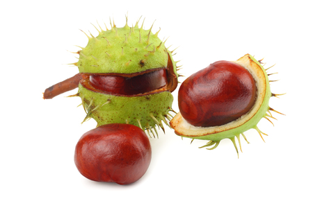 chestnuts isolated on white background. Healthy background.