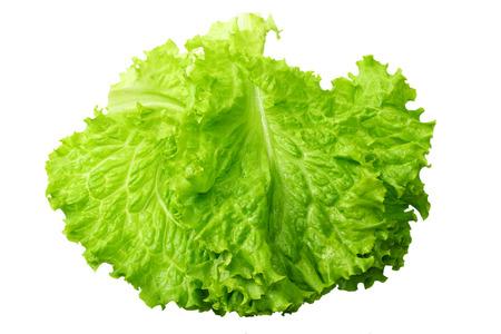 una foglia di insalata isolata su uno sfondo bianco