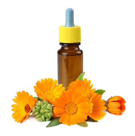 bottle with marigold oil with marigold flowers isolated on white background. calendula flower.