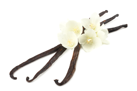 Vanilla sticks with white flower isolated on white background Фото со стока - 124563127