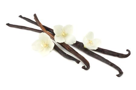 Vanilla sticks with white flower isolated on white background