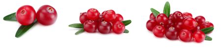 Cranberry collection. Cranberries with leaves isolated on white background. Stockfoto